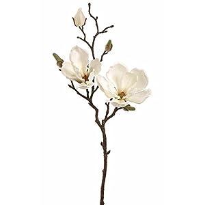 """Afloral Silk Magnolia Branch in Cream White - 19"""" Tall 33"""