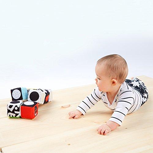 41cfIh4j29L - Baby Einstein Infinity Block High Contrast Soft Block Toy, Newborns and up