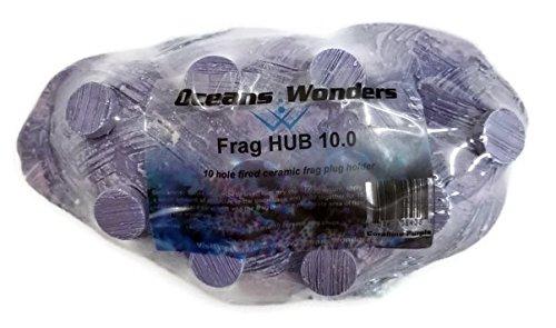 Oceans Wonders Coralline Purple Frag Hub 10.0 Coral Frag Plug Holder with 10 Plugs Fired Ceramic Frag Disks