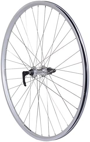 Capstone 29 inch Alloy Rear Wheel QR 36H Freewheel