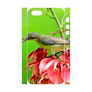 Iphone 5,5S Bird 3D Art Print Design Phone Back Case Use Your Own Photo Hard Shell Protection LK040152