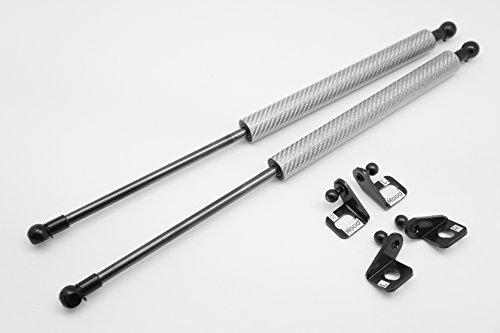 autobahn88Lift Support–Fiat–Familia, plateado, (Silver Carbon)