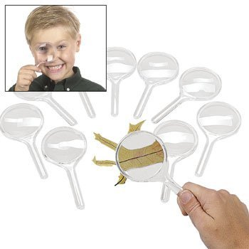 Fun Express Magnificent Magnifying Glasses (10 (Plastic Magnifying Glass)