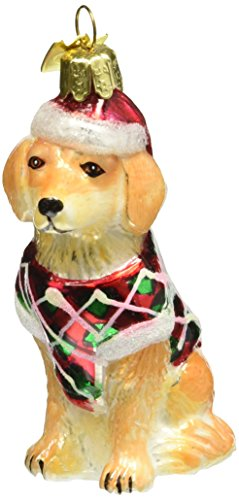 Kurt Adler 3-1/2-Inch Noble Gems Glass Golden Retriever (Retriever Glass Ornament)