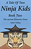 A Tale Of Two Ninja Kids - Book Two: The Ancient Protective Stone