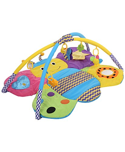 Sunbaby Colorful Butterfly Playmat (Multicolor)