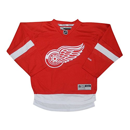 NHL DETROIT RED WINGS: Boys Hockey Jersey / Sweater with Embroidered Logo L/XL Red