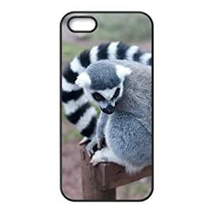 The Aye-aye Hight Quality Plastic Case for Iphone 5s by Maris's Diary