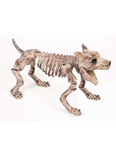 Forum Novelties Small Bone Skeleton Dog, Cream