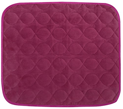 Care Chair (Platinum Care Pads Velvet Opulence Premium Comfort Chair Pad/Underpad Washable Size - 18X24 (Burgundy))
