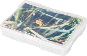 """IRIS 4"""" x 6"""" Photo and Craft Case, Clear"""