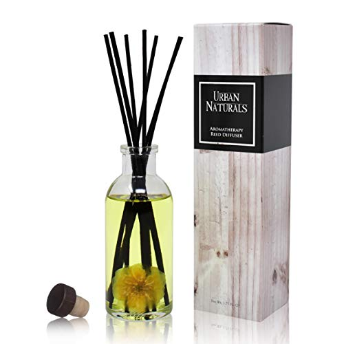 Urban Naturals Rose & Vanilla Reed Diffuser Scented Sticks Set (Comfort + Solace) Mind & Body Aromatherapy Collection | Essential Oil Botanical Room Scent