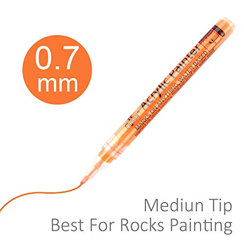 Acrylic Paint Marker 12 Colors Permanent Water Based Paint Pen for Rocks Painting Kit, Ceramic, Glass, Wood, Fabric, Canvas, Mugs,Photo Album, DIY Craft, Scrapbooking Craft Fine Point 0. 7mm