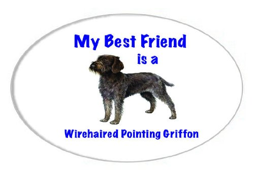 My Best Friend is Wirehaired Pointing Griffon Oval Magnet 1