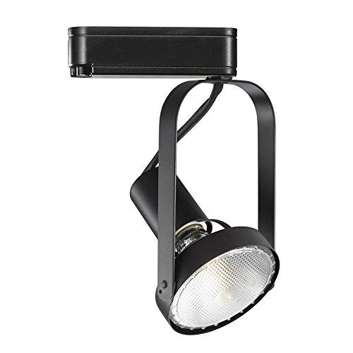 WAC Lighting JTK76439EBK PAR Metal Halide HID Track Head