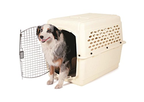 Petmate 36 Inch Kennel 50 70 Pound Bleached