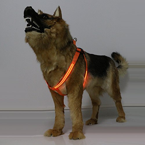 ss, USB Rechargeable No Pull Adjustable Harness with Lightweight ABS Buckle Can be Locked, Glow in The Dark Makes Your Dog Visible, Safe & Seen for Night Walk - Orange, XL ()