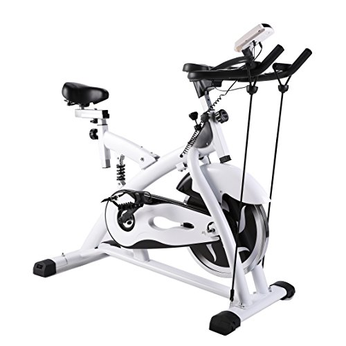 Z ZELUS Ultra-quiet Stationary Spin Exercise Bike Indoor Cycling Bike Trainer with Shock-Absorbing Flywheels & LCD Monitor for Cardio Exercise Gym Workout