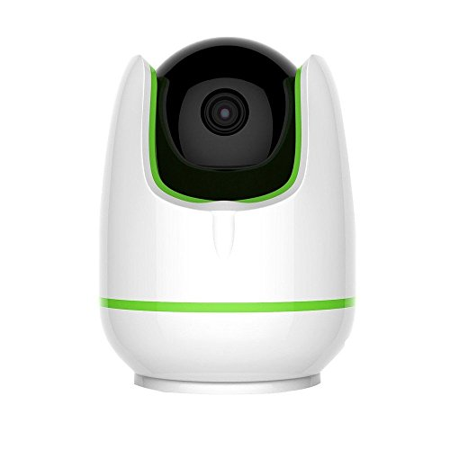 Bigaint Monitor Wireless Surveillance Security