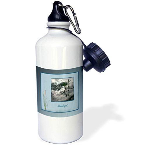 3dRose Beverly Turner Thank you Design - Thank you, Frog in a Pond Photo, Cattails Accent, Blue Frame - 21 oz Sports Water Bottle (wb_286999_1)
