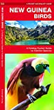 New Guinea Birds: A Folding Pocket Guide to Familiar Species (Wildlife and Nature Identification)