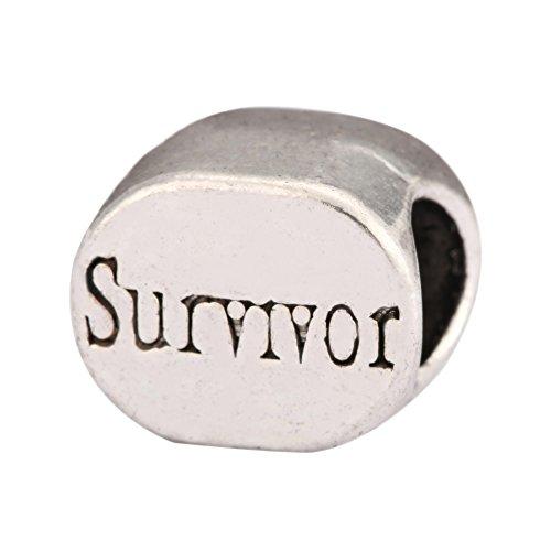 - 10pcs Survivor Charms Large Hole Beads Antique Silver Tone for Earrings Bracelet Necklace Anklet Jewelry Making MEC-60