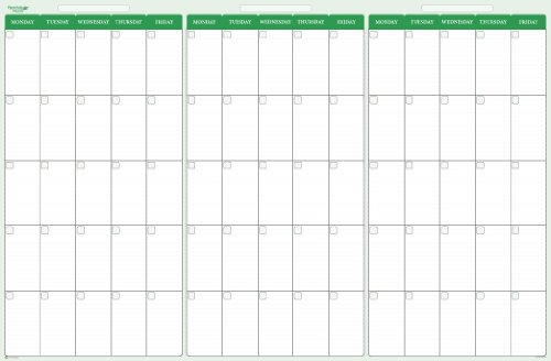 Earth Green 90-Day 3-Month Quarterly Dry/Wet-Erasable Wall Calendar: 24 in. x 36 in. Monday-Friday Only. No Weekends (Wall Quarterly)
