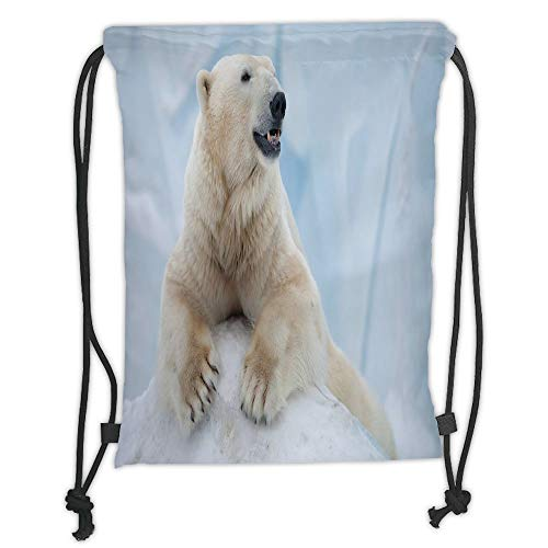 Zoo,Portrait of Large White Polar Bear on Ice Claws Antarctica North Outdoors Decorative,Light Blue Cream White Soft Satin,5 Liter Capacity,Adjustable - Satin Portrait