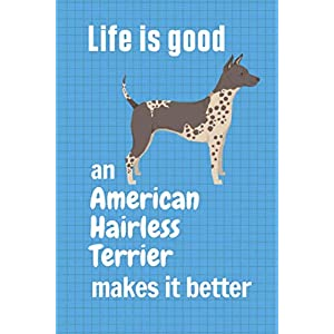 Life is good an American Hairless Terrier makes it better: For American Hairless Terrier Dog Fans 31