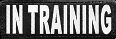 """Service Dog """"In Training"""" Reflective Velcro Patch for DogStylze And Dean & Tyler Vests"""