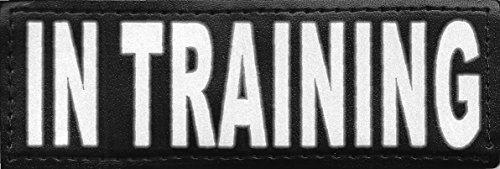 Service Training Reflective Velcro DogStylze