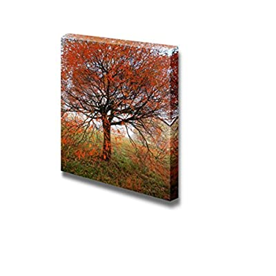 Canvas Prints Wall Art - Tree with Red Leaves in Autumn | Modern Wall Decor/Home Art Stretched Gallery Canvas Wraps Giclee Print & Ready to Hang - 24