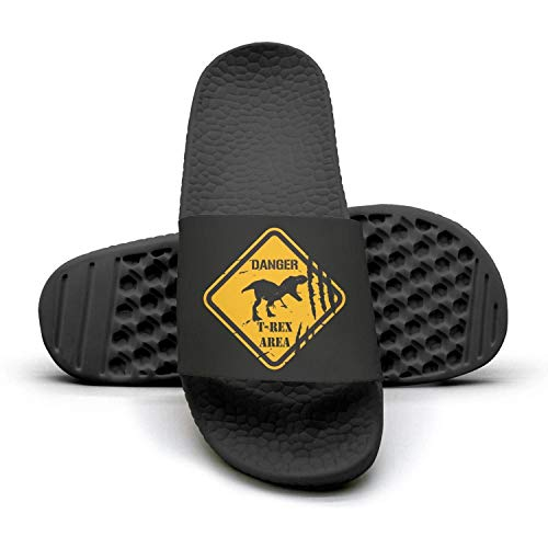 Summer Woman Dinosaur Sandals Slippers Mules Slides Motor T T lady Riding 1 for rex Danger Dinosaur Rex 4qqxwXrC