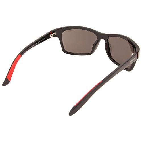 Carrera Grey Sonnenbrille Black Shiny Pz CARRERA 8013 Negro S FFprqvw
