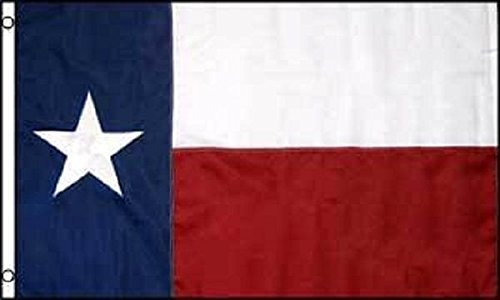 (ALBATROS 12 in x 18 in Embroidered State of Texas 600D Sewn Nylon Flag for Home and Parades, Official Party, All Weather Indoors Outdoors)