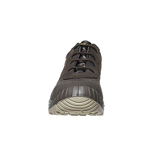 Man Low Shoes Brown S3 Nikola Standard Parade Safety EBxwCq5Y