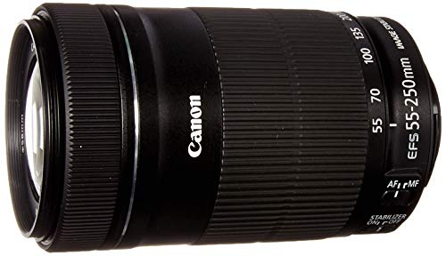 Canon EF-S 55-250mm F4-5.6 is STM Lens for Canon SLR Cameras (Renewed) (Best Canon Crop Sensor Camera)
