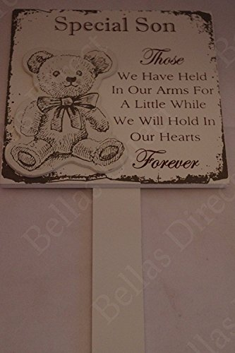 Wooden Box Tribute (Special Son Memorial Plaque Grave Stick Those We Have Held In Our Teddy 627B)