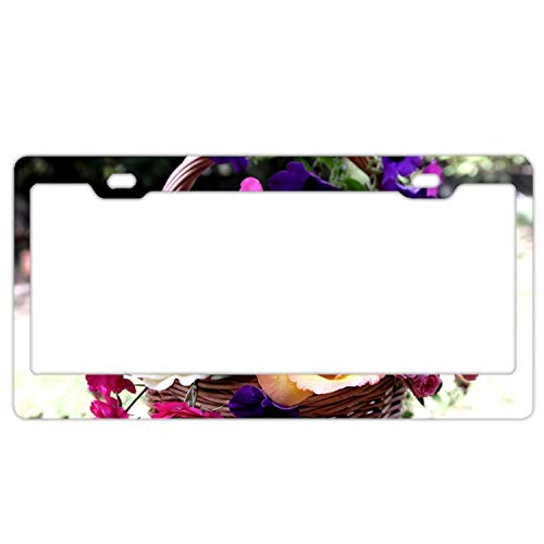 Zogpemsy Roses Petunia Carnation Baskets License Plate Frame with 2 Holes