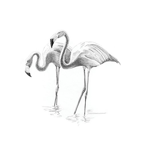 Royal Brush Sketching Made Easy Flamingoes Mini Kit, 5