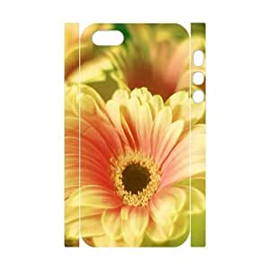 3D For SamSung Note 4 Phone Case Cover Gerbera Daisy Bouquet, For SamSung Note 4 Phone Case Cover Daisy Cheap for Girls, [White]