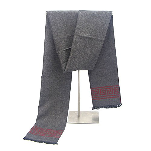 HUAYI Men's Cashmere-Like Soft Long Scarves Double Side Scarf from HUAYI