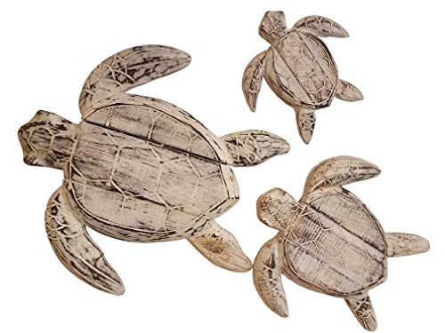 All Seas Imports Set of (3) Gorgeous HANDCARVED Wood Turtles Wall Decor with Beautiful Distressed White Color Paint -