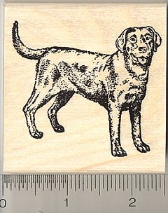 Black Labrador Retriever Rubber Stamps - Wood Mounted
