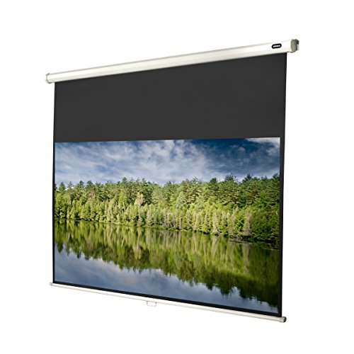celexon 81'' Manual Economy 71 x 40 inches viewing area, 16:9 format, Manual Pull Down, Wall or ceiling mounting, Gain 1.0 by Celexon