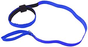 Eyecatchers Pet Wear Loop All-in-One Emergency Dog Leash and Collar, Royal Blue