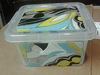 Peek-a-boo Storage : The Essential Mini Box; Multicolor Small Fashion Storage Bin (Sophia)