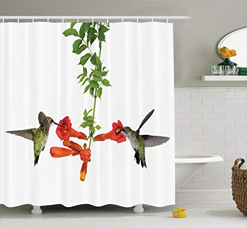 Ambesonne Hummingbirds Decorations Shower Curtain Set, Two Hummingbirds Sip Nectar from A Trumpet Vine Blossoms Summertime, Bathroom Accessories, 84 Inches Extralong, White Red