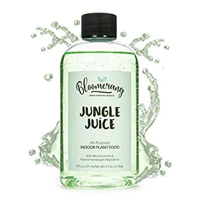 Bloomerang Indoor Plant Food - Jungle Juice All Purpose Liquid Houseplant Fertilizer + Natural Norwegian Seaweed Extract for Healthy Plants and Soil - 8 oz