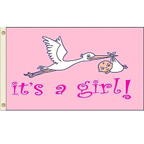 It's a Girl Flag 3x5 Polyester Flag by Vista Flags